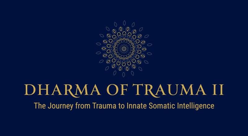 Dharma of Trauma 2